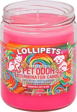 Specialty Pet Products Lollipets Pet Odor Exterminator 13 Ounce Jar Candle