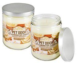 Set of 2 Pet Odor Exterminator Candle, Creamy Vanilla, 13 oz. Jar Bundled by Maven Gifts