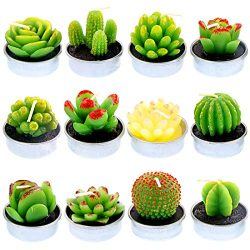 Glarks 12Pcs Unique Designs Cactus Tealight Candles Set, Handmade Delicate Succulent Cactus Arti ...