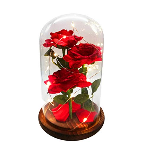 URBANSEASONS Beauty and The Beast Rose Enchanted Rose,Red Silk Rose and Led Light with Fallen Pe ...