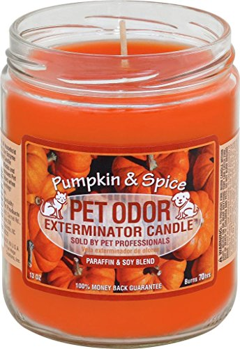 Specialty Pet Products Pet Odor Exterminator Candle Pumpkin & Spice