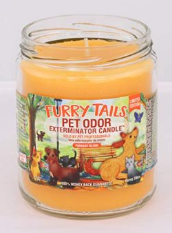 Furry Tails Pet Odor Exterminator 13 Ounce Jar Candle
