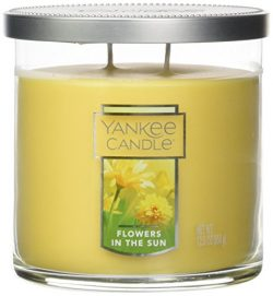 Yankee Candle Medium 2-Wick Tumbler Candle, Winter Glow