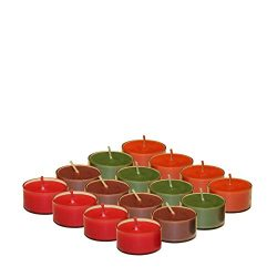 Scented Tealight Candles Assorted Set of 48 Soy wax Tealights in 4 Fragrances | Pumpkin Spice, F ...