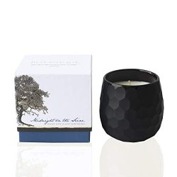 Botanique Midnight on The Seine | 16 oz Natural Coconut Soy Blend | Luxury Spice Scented Candle  ...