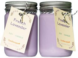 Candlecopia French Lavender Strongly Scented Hand Poured Premium Soy Candles, 12 Ounce Pewter Li ...