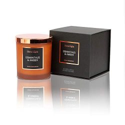 Home Lights Luxury Designer Jar Scented Candle, Rosegold Steel Lid and Silky Coloured Glass 100% ...