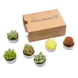 YanSheng 6 Pcs Cactus Tealight Candles, Handmade Delicate Cute Smokeless Succulent unscented Can ...