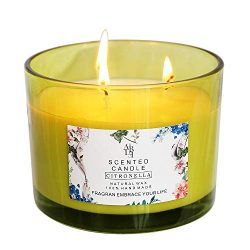 YCYH Citronella Scented Candles Outdoor Indoor Aromatherapy Stress Relief Pure Soy Wax 3-Wick Ar ...