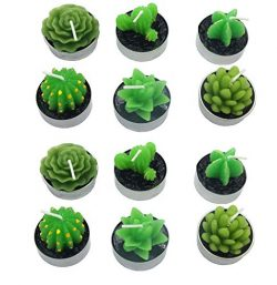 12 PCS Cute Succulent Cactus Candles Smokeless Cactus Candles Handmade Delicate Decorative Candl ...