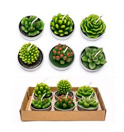 Phyther Cactus Shaped Tealight Candles, Gift Set with Assorted Unscented Decorative Long Burning ...