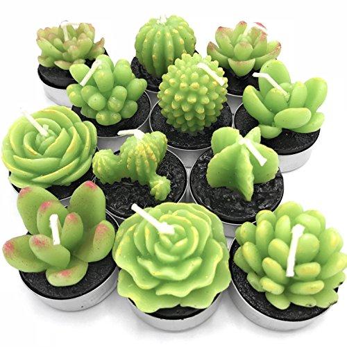 TINKERTORY Jasmine Scented Succulent Cactus Candles Decor in Tealight holders 12 Unique Designs
