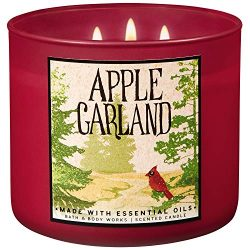 Bath and Body Works 2018 Holiday Limited Edition 3-Wick Candle (Apple Garland)