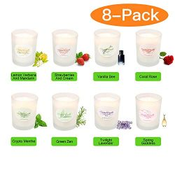 Y YUEGANG Scented Candles 8 Pack Gift Set, Aromatherapy Set of Fragrance Soy Wax, 20 Hours Burn  ...