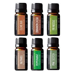 Winter Essential Oils Set – Gift Set of 6 Classic Holiday Essential Oils – Cinnamon, ...