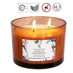 YYCH Scented Candle Citronella Candles Aromatherapy Candles Scented Soy Wax 3 Wick,70 Hour Burn, ...