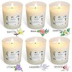 YIHANG Scented Candle Gift Set – (6 x 2.2 Oz/65g) – Aromatherapy Set of Fragrance So ...