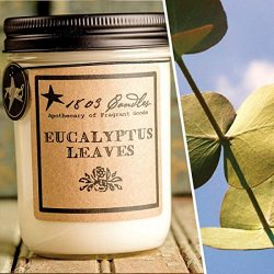 1803 Candles – 14 oz. Jar Soy Candles – (Eucalyptus Leaves)