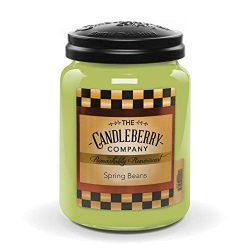 Candleberry Spring Beans, Premium Fine Fragrance Candle The Home, Large Glass Jar, 26 oz