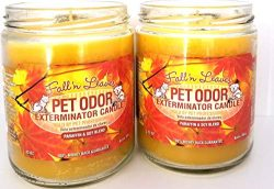 Specialty Pet Products Pet Odor Exterminator Candle, Fall 'N Leaves – Pack of 2
