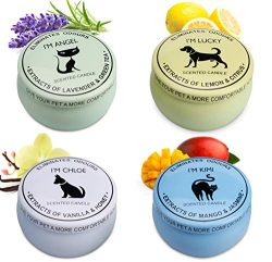 Scented Candles Gift Set (Lemon & Citrus, Vanilla & Honey, Mango & Jasmine, Lavender ...