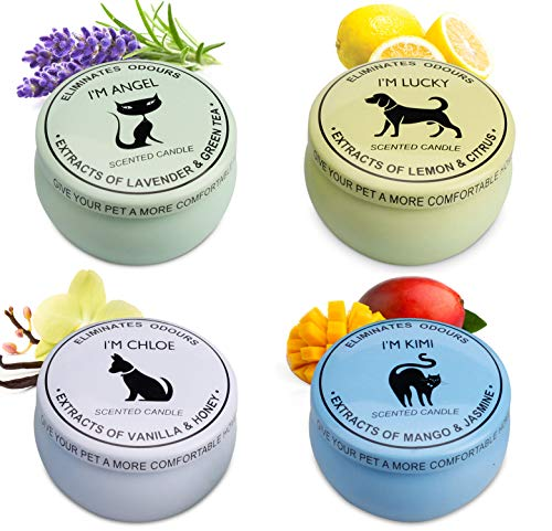 Scented Candles Gift Set (Lemon & Citrus, Vanilla & Honey, Mango & Jasmine, Lavender ...