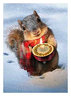 Avanti 10-Count Christmas Cards, Little Squirrel with a Candle