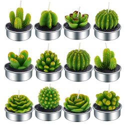 Aweslife Cactus Candles, 12 PCS Handmade Delicate Succulent Cactus Tea Light Candle Mini Tea Lig ...