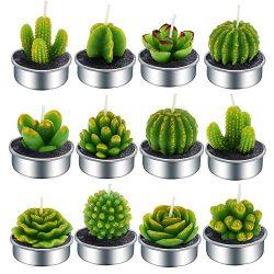 Aweslife Cactus Candles, 12 PCS Handmade Delicate Succulent Cactus Tea Light Candle Mini Tea Lig ...