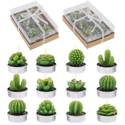 Glarks 12-Pieces Handmade Delicate Succulent Cactus Artificial Succulents Tealight Candles Perfe ...