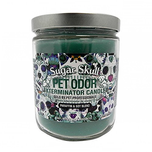 Pet Odor Exterminator Candle, Sugar Skull,13 oz
