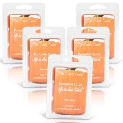 The Candle Daddy Pumpkin Spice Up in This Bitch- Maximum Scent Wax Cubes/Melts- 5 Packs -10 Ounc ...