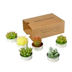 SanSeng Cactus Tealight Candles, Handmade Delicate Succulent Cactus Candles( Perfect for Birthd ...