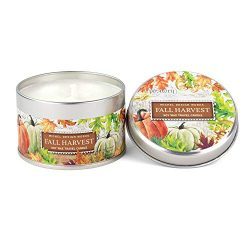 Michel Design Works Soy Wax Candle in Travel Tin Size, Fall Harvest