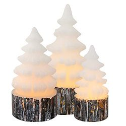 Wondise Christmas Tree Flameless Candles Battery Operated with Timer, LED Flickering Candles Rea ...