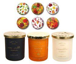 DW Home Autumn Fall Candles – SEA Salt Pumpkin, Pumpkin Spice & Vanilla Pumpkin – ...