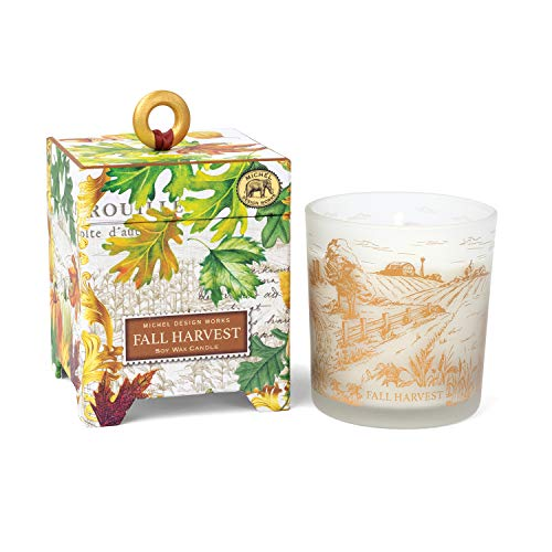 Michel Design Works 6.5 oz Soy Wax Candle, Fall Harvest