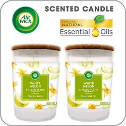 Air Wick Scented Candles with Essential Oils, Aromatherapy Candles Jar, White Melon & Ylang  ...
