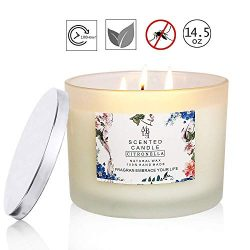 YIIA Citronella Candles Scented 3 Wick, Giant 1lb Soy Wax, Glass Jar 14.5 oz, 80 Hour Burn, Outd ...