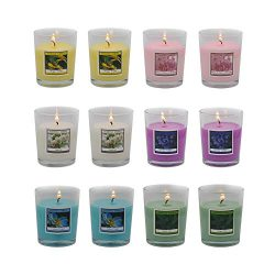 Scented Candles Set 12 Natural Soy Wax Votive Candles – 12 Hour Burn Time, Outdoor and Indoor