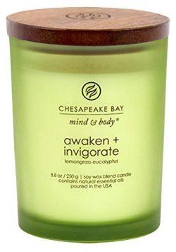 Chesapeake Bay Candle Scented Candle, Awaken + Invigorate (Lemongrass Eucalyptus), Medium