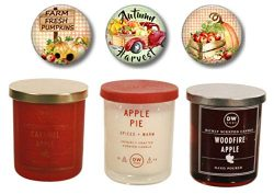 DW Home Autumn Fall Candles – Caramel Apple, Apple Pie, WOODFIRE Apple – Limited Edi ...