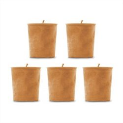 Pumpkin Spice Soy Candles – 5 Pack of Soy Votive Candles