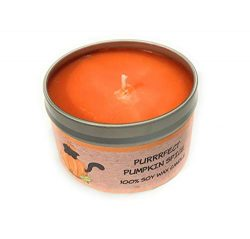 Warm Pumpkin Spice Super Scented Help an Animal Rescue-100% Soy Candle -Handpoured in The USA