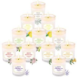 Tobeape Scented Candles Gift Set, Natural Soy Wax 2.5 Oz Portable White Frosted Glass Candles, A ...