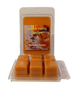Hidden Valley Candles Pumpkin Spice Double Scented Wax Melts, 2 Pack.Fresh Pumpkin with The Perf ...