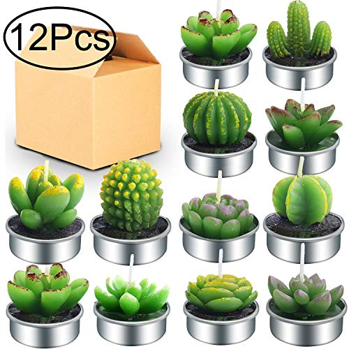 Outee 12 Pcs Cactus Tealight Candles Handmade Delicate Succulent Cactus Candles Flameless Aromat ...