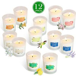 YIIA Scented Candles 12 Pack Gift Set, Aromatherapy Set of Fragrance Soy Wax, 12-15 Hours Burn T ...