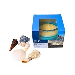 Luxury Scented Candles | Infused with Calming Essential Oil | Premium 3 Wick Candles | Decorativ ...