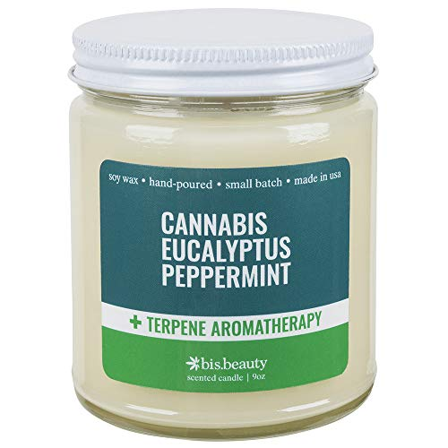 Cannabis Eucalyptus Peppermint Aromatherapy Candle – Energy Healing Terpenes – Inspi ...